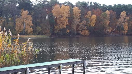 Herbstputz 2018